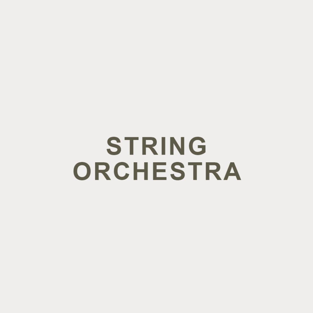 STRING-ORCHESTRA